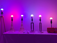 LED smart bulbs are lined up against a purple and pink wall.