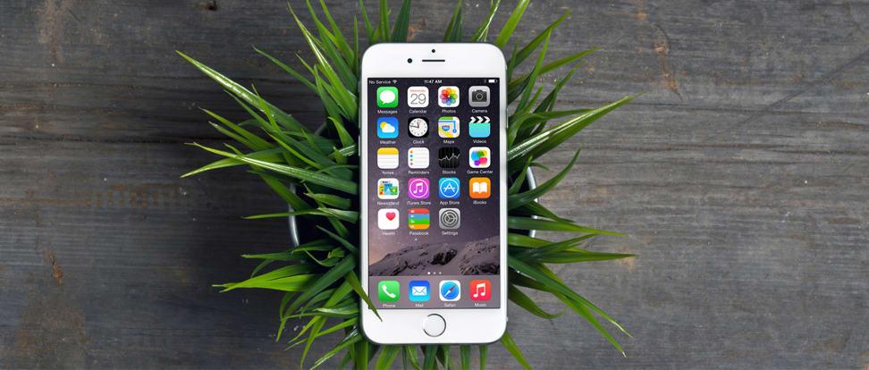 Apple iPhone 6 Design