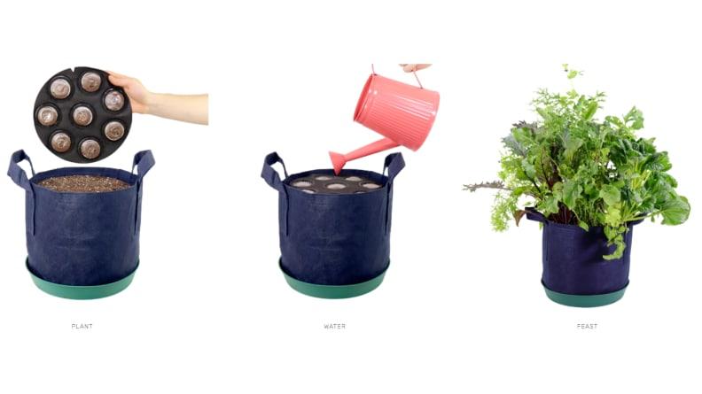 Seedsheets Weed-Free Planter
