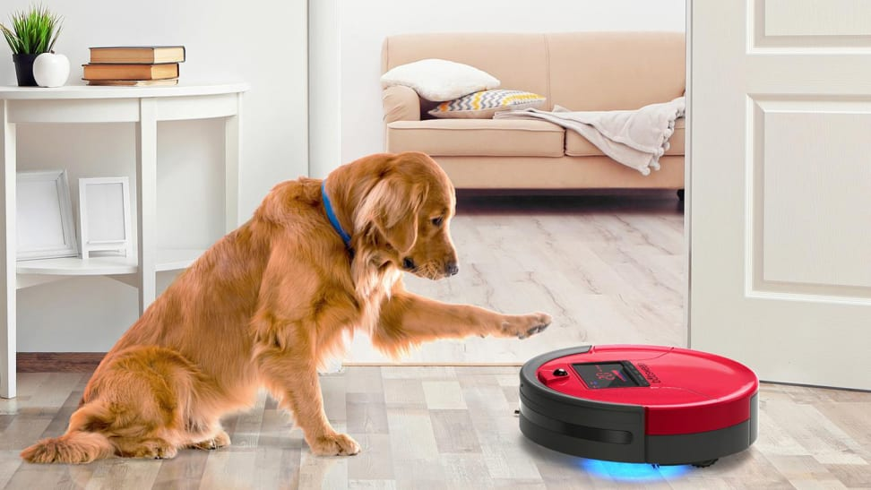 What's the best robot vacuum if your dogs shed a lot?