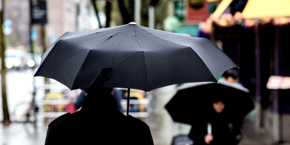 The Davek Solo umbrella