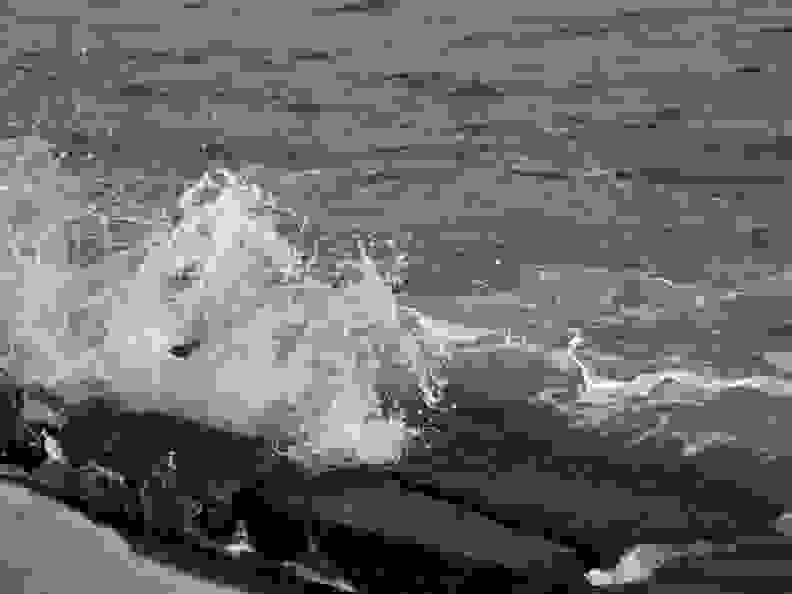 Sigma-Art-60mm-F2_8-DN-wave_full.jpg