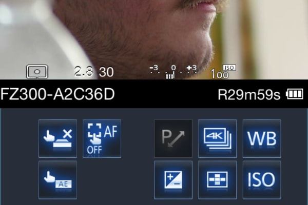 You have access to settings like white balance, ISO, exposure compensation, and drive mode.