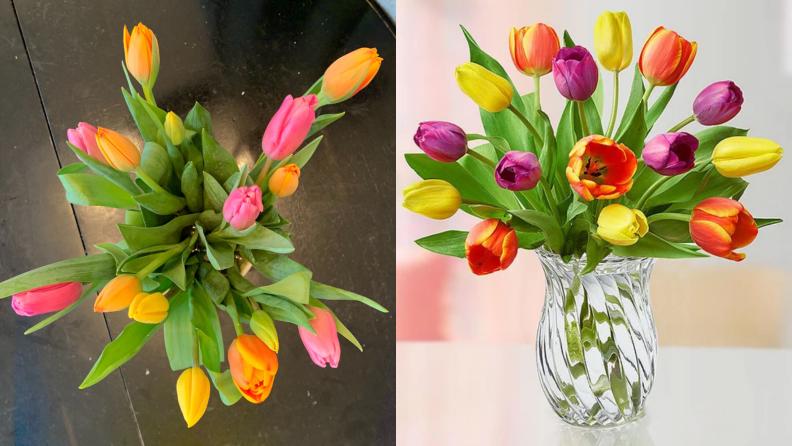 LA Tulips