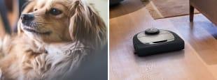 Best pet hair vacuums hero