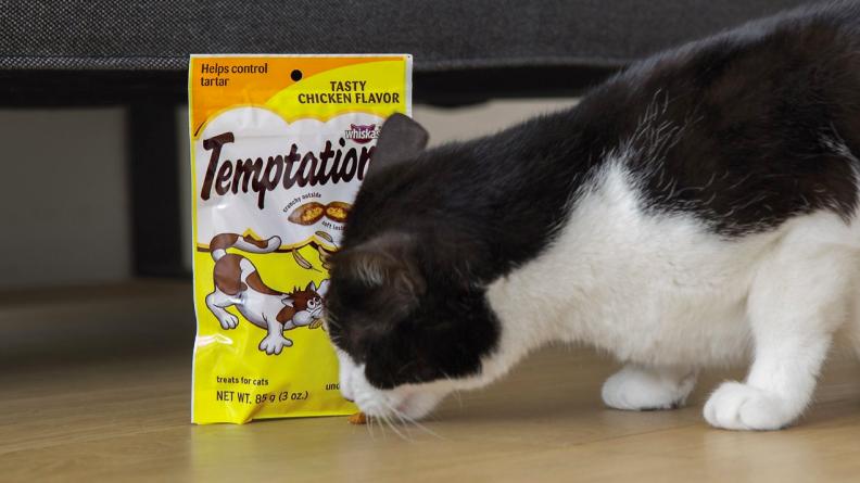 12 Cat treats