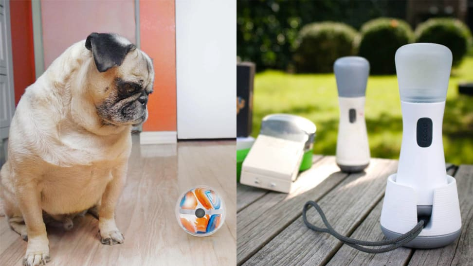 We love these 2 new smart toys for kids and pets