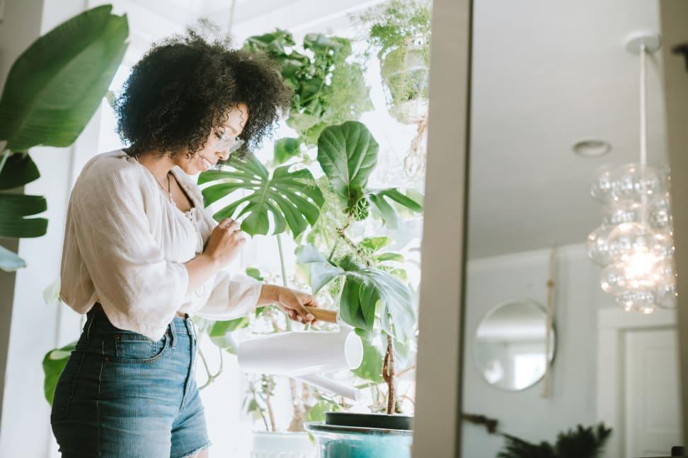 Woman watering her indoor plants