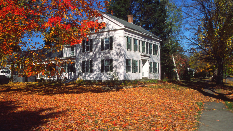 leaves-on-lawn