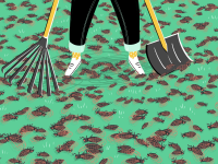 Illustration of person cleaning up dead cicadas with a rake and snow shovel