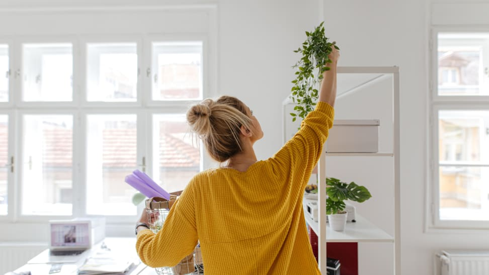 Girl in yellow cardigan hanging a plant on the ceiling