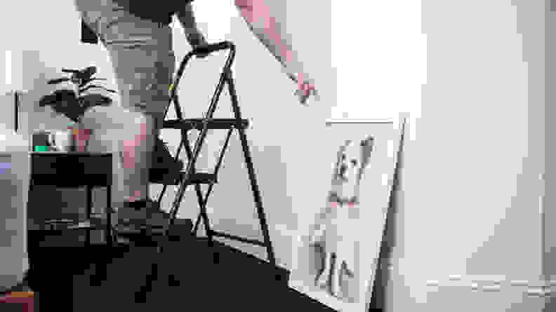 A person climbs a 3-step stool and reaches for a portrait of a dog