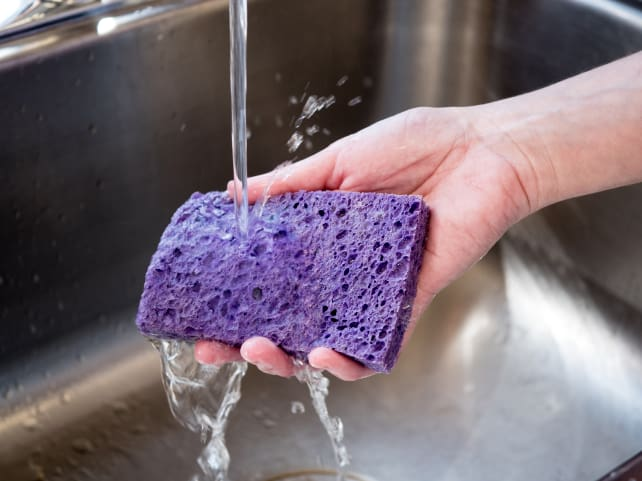 Sponge with water