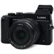 Panasonic lumix gx8 review vanity