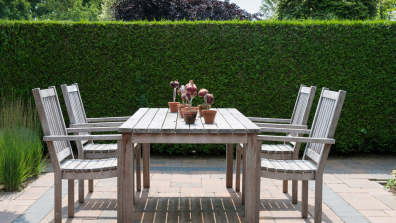 hedge dining table