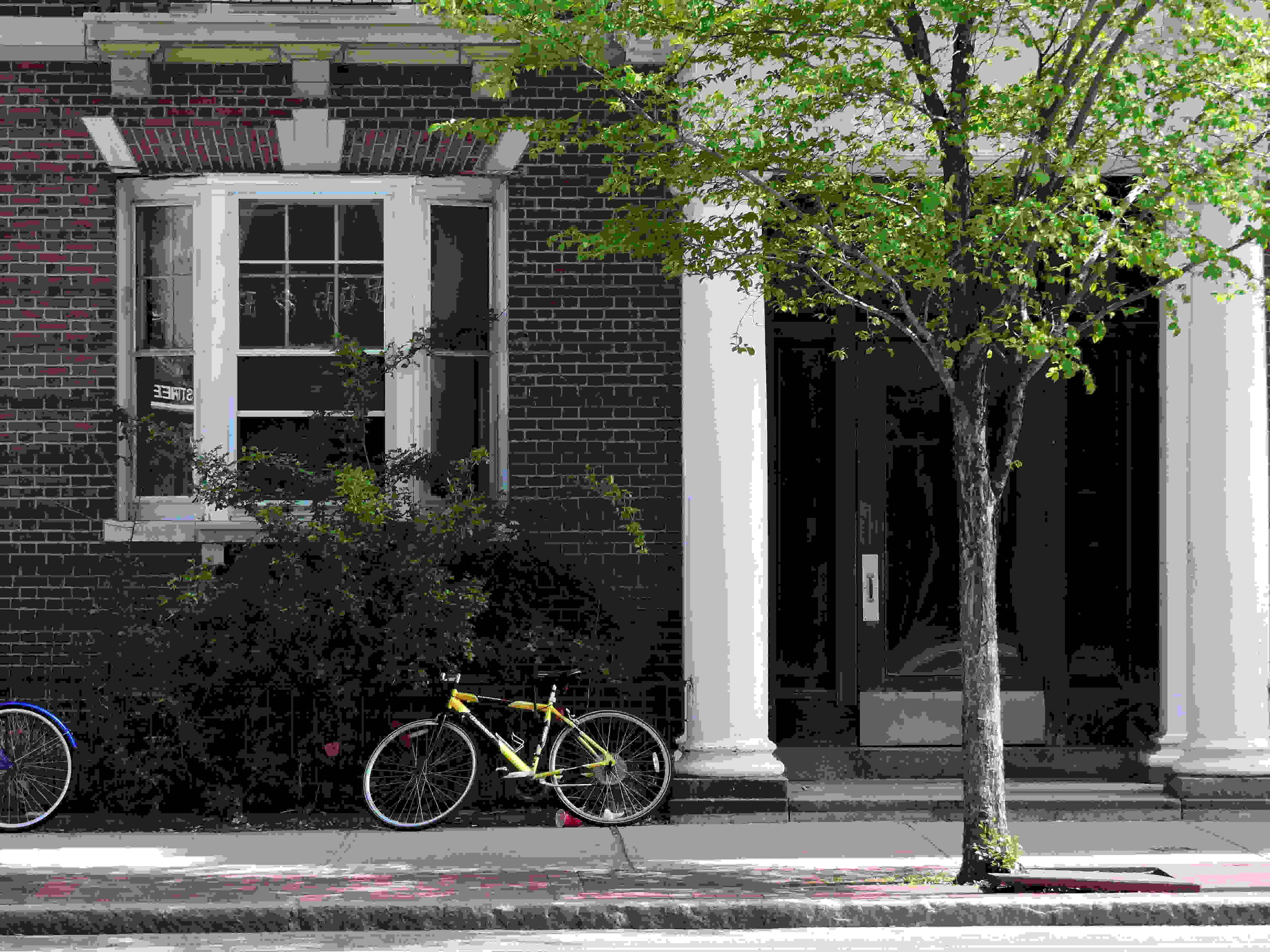 A sample photo taken by the Nikon Coolpix P600.