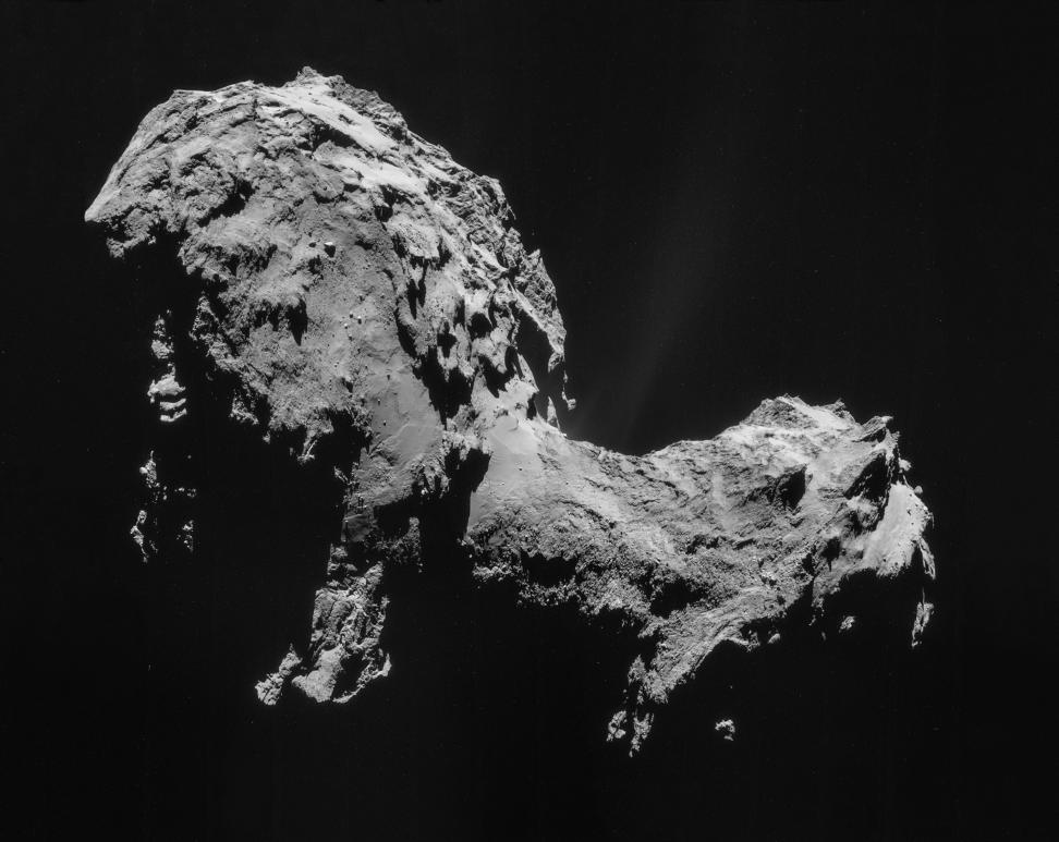 Rosetta Comet Portrait.jpg