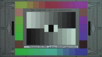 Panasonic_HDC-SD9_60_Lux_24P_DC_web.jpg