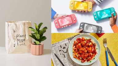 Image of a plant, four Nintendo Switches, and a dinner