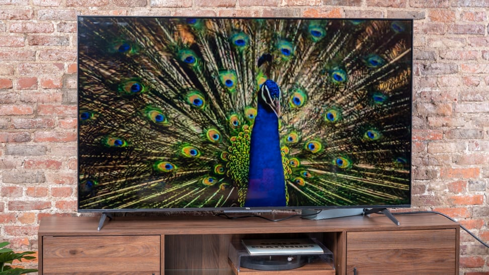 The 65-inch TCL 5-Series with Google TV displaying 4K content in a living room setting