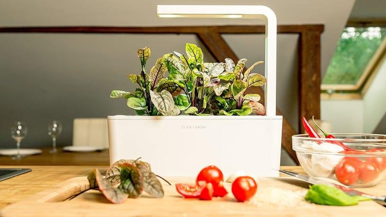 Click & Grow Indoor Smart Fresh Herb Garden Kit