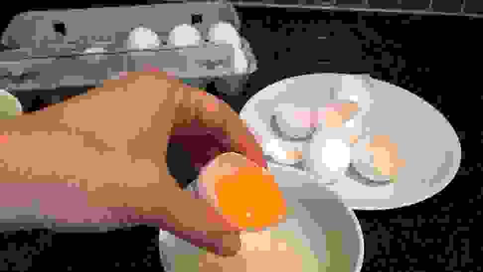 Using the Eggshell