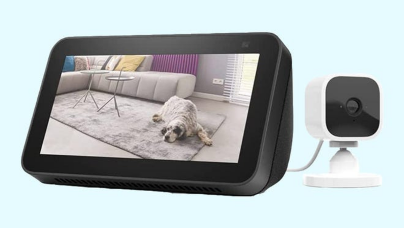 Amazon Blink Mini with dog laying down on living room floor on the screen in front of blue background.