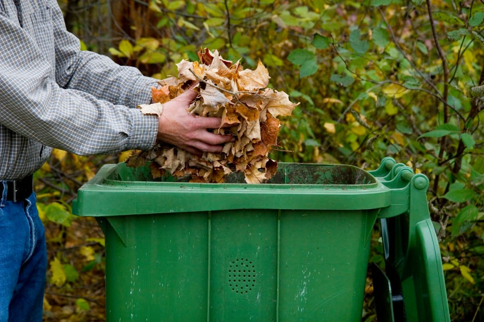 Man cleaning up leaves in fall