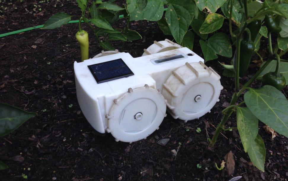 The Tertill from Franklin Robotics is a solar-powered, self-directed robot that will trim your garden's weeds.