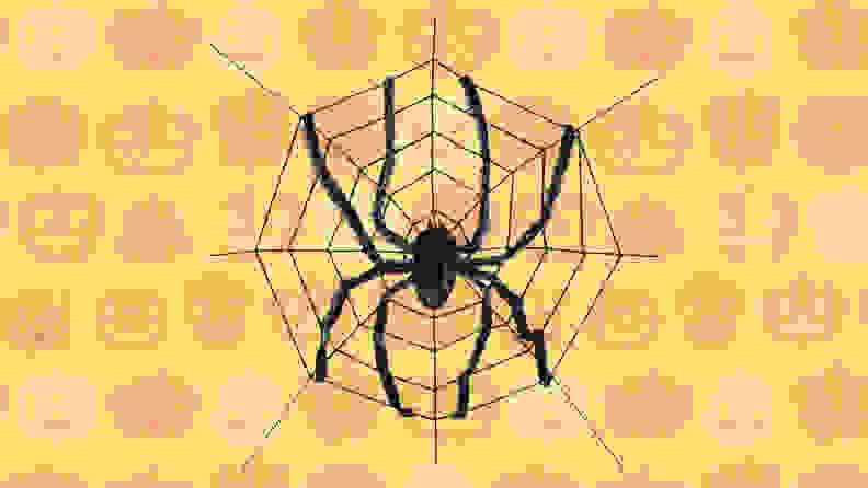 Walmart spider