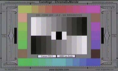 Canon_FS11_3000_Lux_Auto_web.jpg