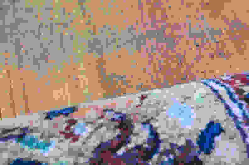 Vacuum-that-carpet-1.jpg