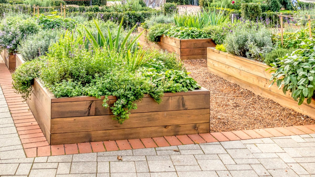 How to build raised garden beds in your yard