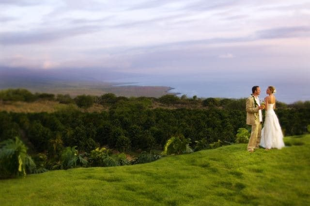 A bride and groom stand on a grassy hill overlooking the ocean