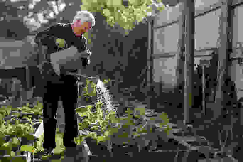 GardeningWatering