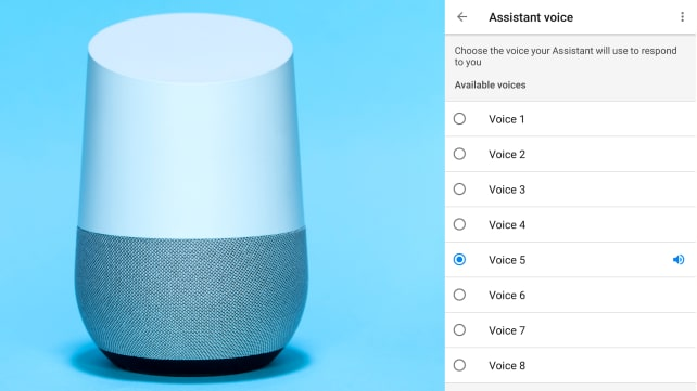 Google Home Voice Options