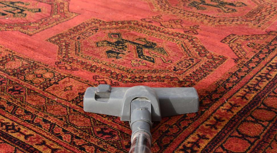 vacuum every type of rug