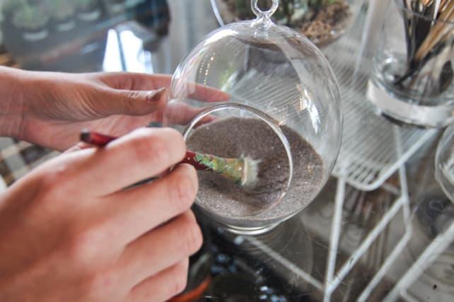 Succulent-Terrarium-4.jpg
