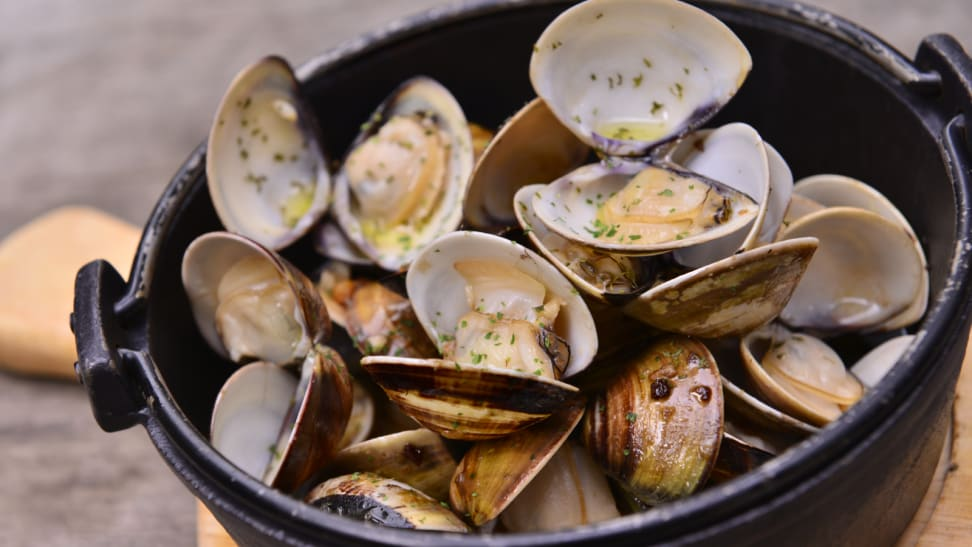 Steamed clams at a clambake