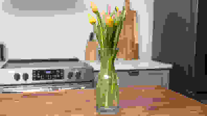 Tulips standing on a table