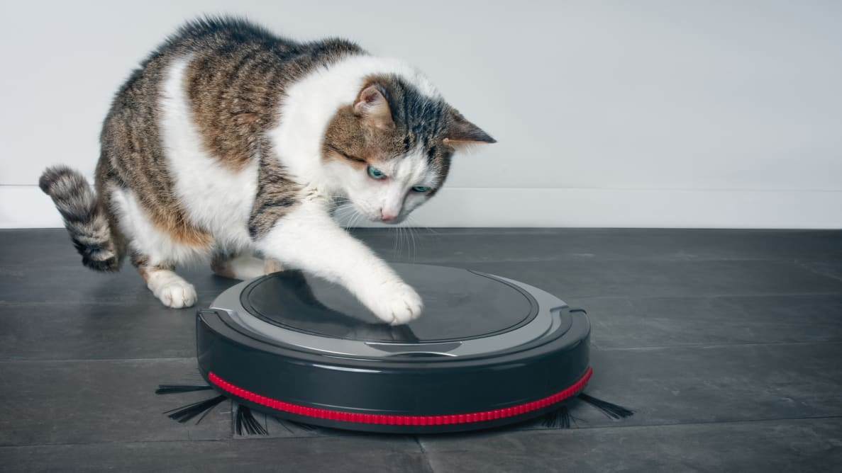 The best robot vacuums for pet owners