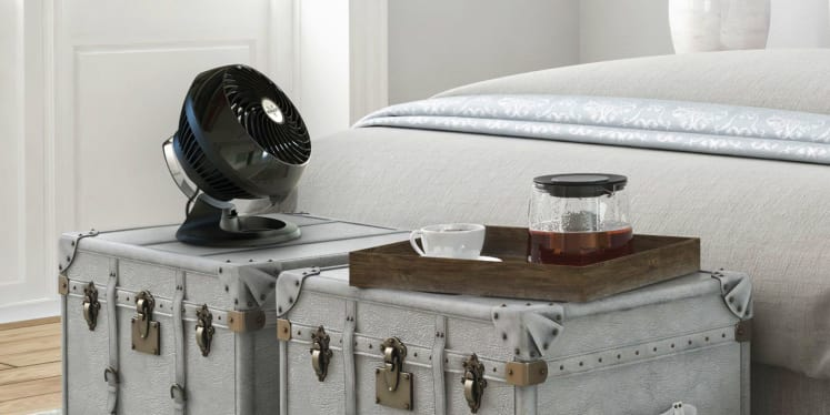 This Fan From Vornado Is So Great I Don T Even Need An Air