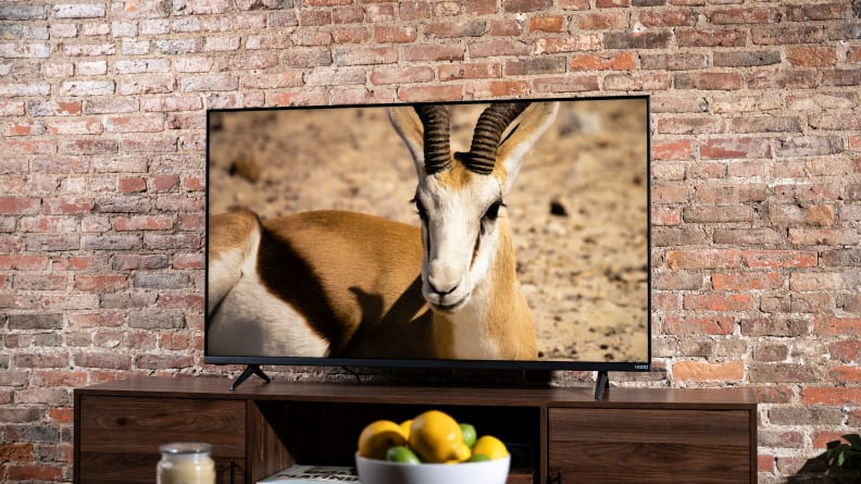 The Vizio M-Series MQ6 displaying 4K/HDR content in a living room setting