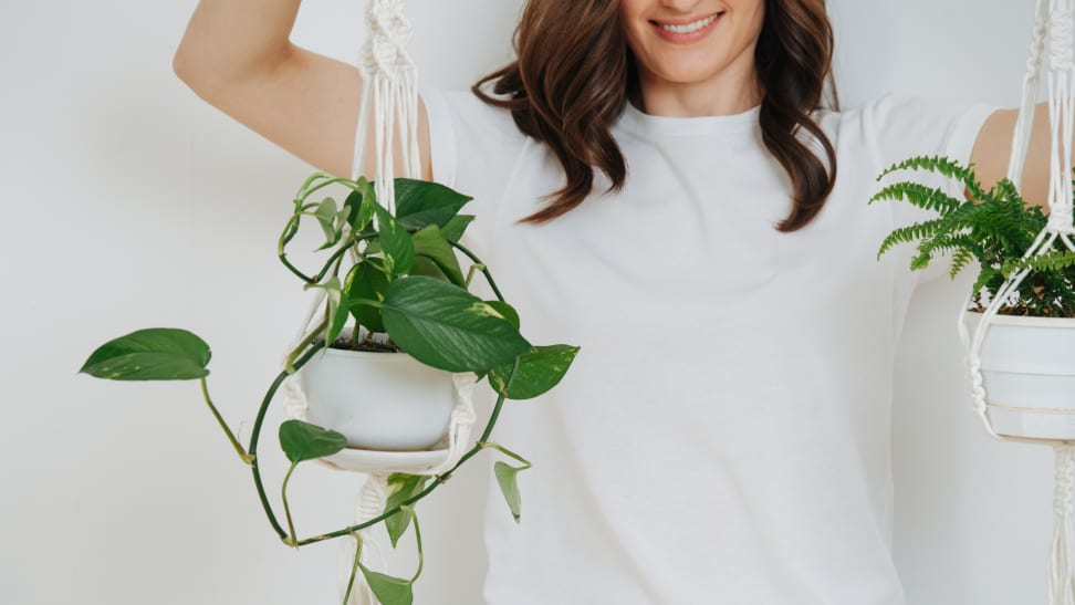 A person holds two house plants hanging from white macrame.