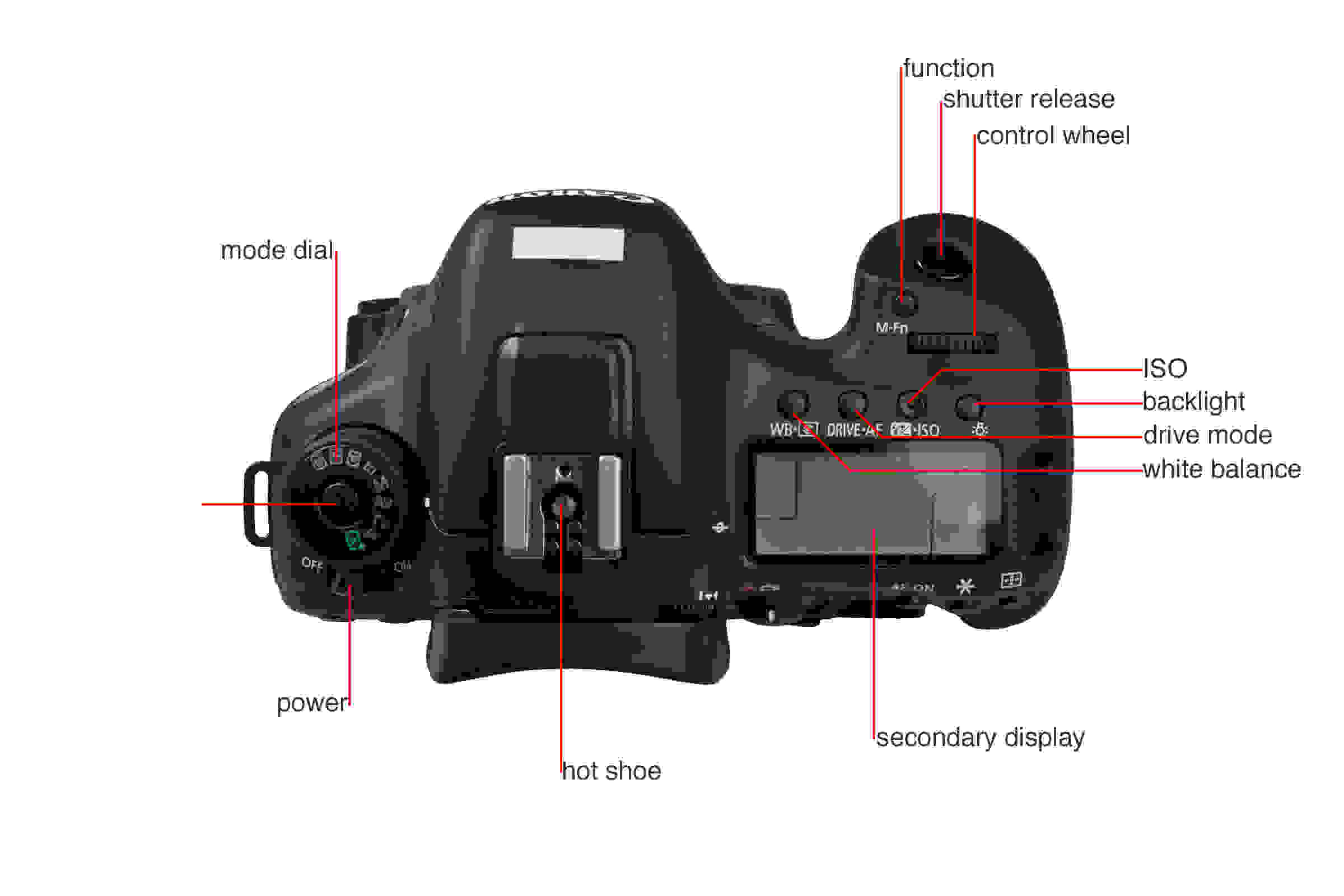 A picture illustrating the buttons and controls of the Canon 7D MkII's top.