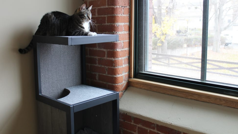 Tired of looking at an ugly cat tree? This new line of cat furniture will be a dream come true.