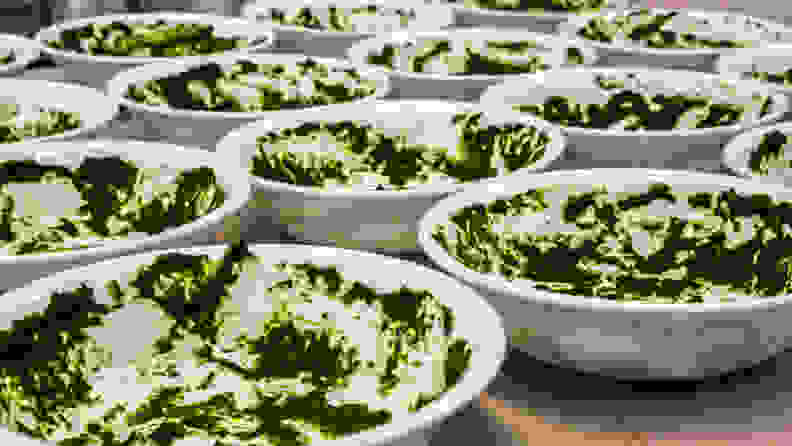 A series of bowls covered in a thin, mottled layer of pureed spinach.
