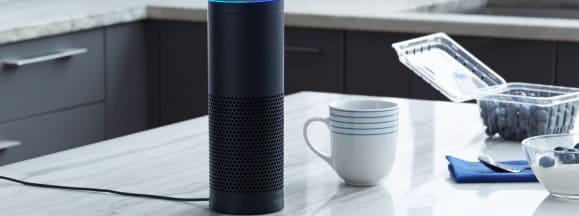 Amazon echo alexa set up lead
