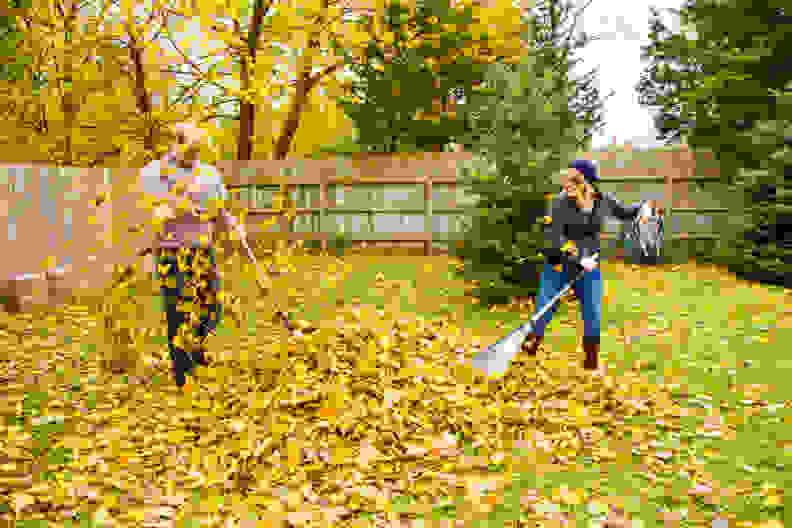 Autumn-leaves-need-raking