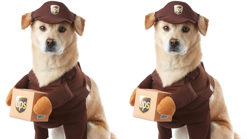 UPS pup
